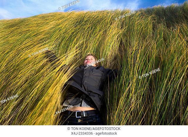 marram grass protects the dutch sand dunes