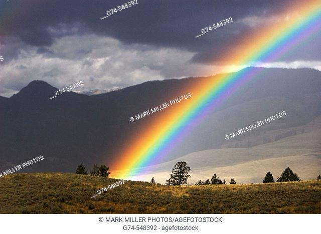 An afternoon rainbow in Yellowstone National Park, Wyoming. USA