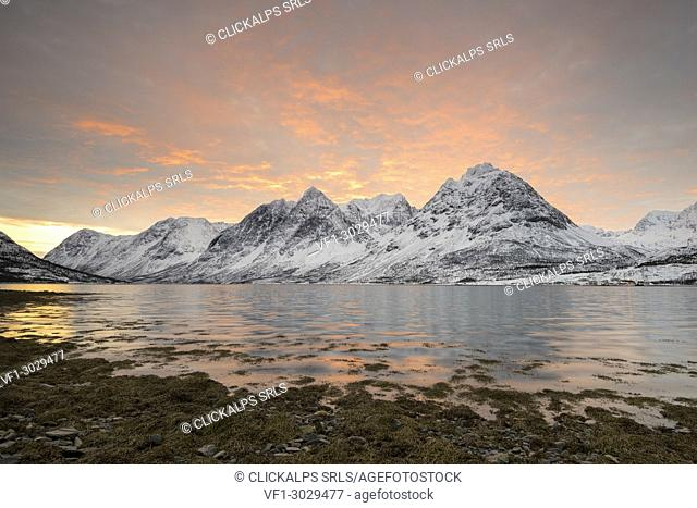 The sunrise on the beach by frozen sea and snowy peaks, Svensby, Lyngen Alps, Tromso, Norway, Europe