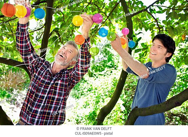 Father and adult son putting fairy lights in tree