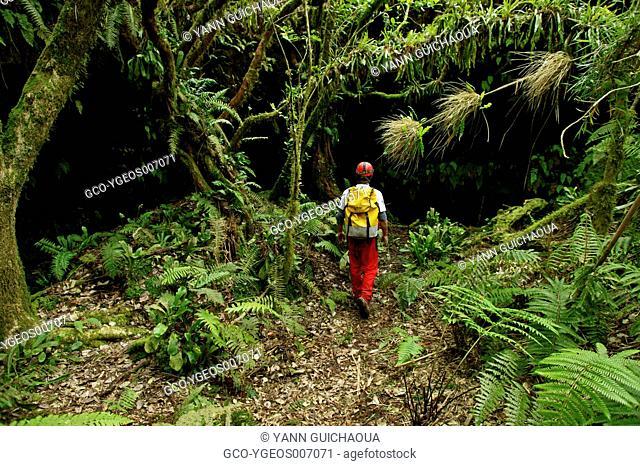 ENTRANCE OF GROTTE BATEAU - REUNION ISLAND - FRANCE