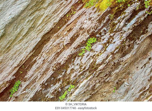 Rock cut texture and green alpine grass on the top of the mountains at natural park, Romania