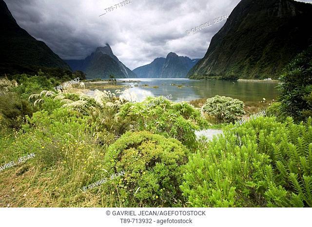 Mitre Peak, Milford Sownd, Fiordland National Park