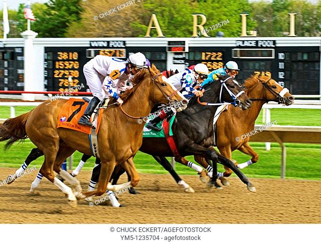 Group of Thoroughbreds gaining momentum at the end of a race