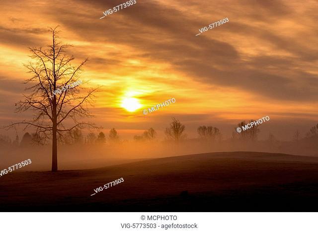Morgens in Bayern mit aufsteigendem Nebel. - Bayern, Germany, 20/03/2015