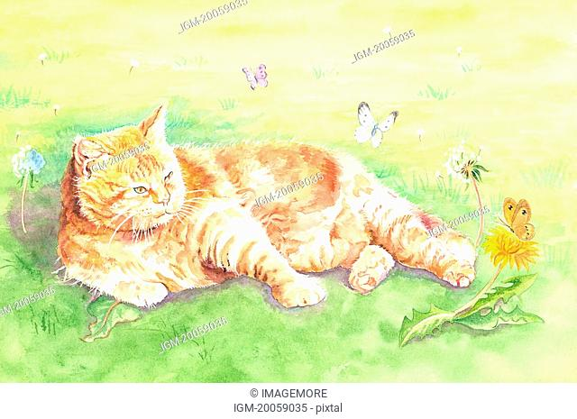 Insects, Animal, Watercolor painting of a cat looking at butterflies