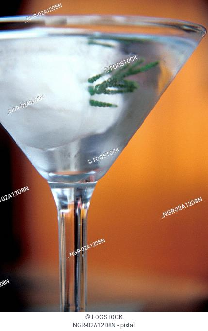 Clear Cocktail in Martini Glass With Sprig of Juniper