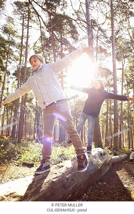 Twin brothers walking along fallen tree trunk in forest