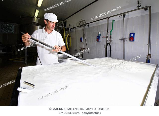 Cheese maker mixing the milk in a large stainless steel tanks