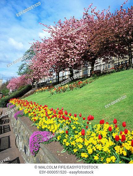 West Princes Street Gardens. Edinburgh. Scotland