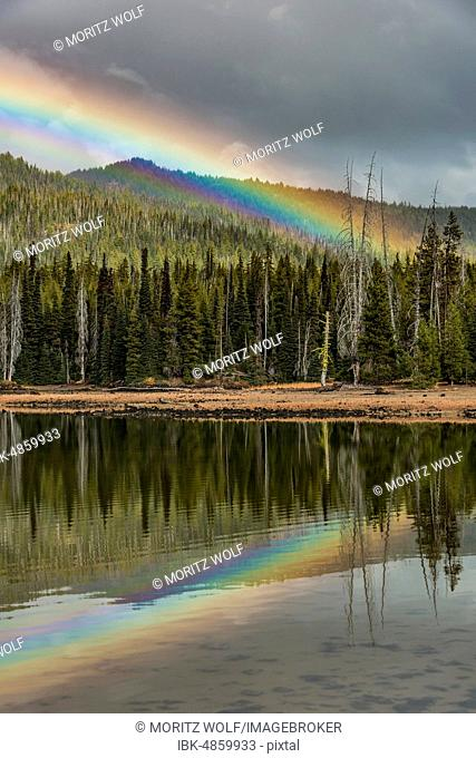 Rainbow in dark clouds over a forest, reflected in Sparks Lake, Oregon, USA