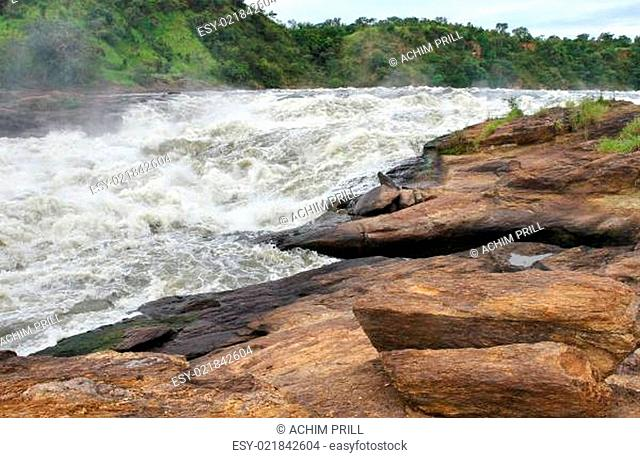 whitewater at the Murchison Falls