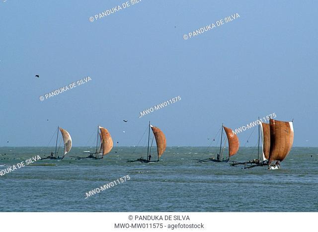 Fishing boats return to land after a night of deep sea fishing Negombo, Sri Lanka July 9, 2005