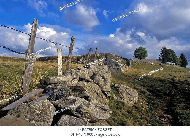 FENCE AND STONE WALL, COMPOSTELA ROAD, LOZERE 48, FRANCE