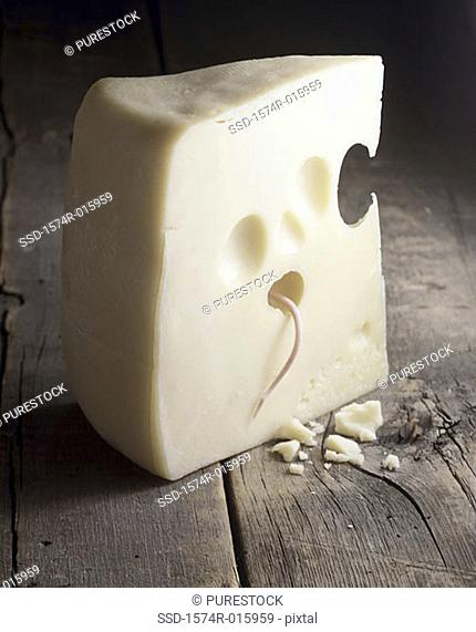 Mouse in cheese
