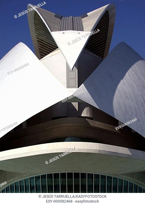 Spain  Comunidad Valenciana  Valencia  City of the Arts and the Science  Palau de les arts Reina Sofía, opera house and performing arts center  It contains four...