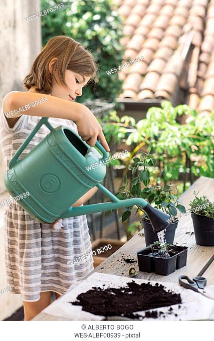 Girl repotting plant