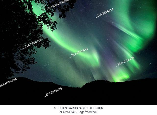 Norway, Nordland, Lofoten islands, Vestvagoy island, northern lights (aurora borealis)