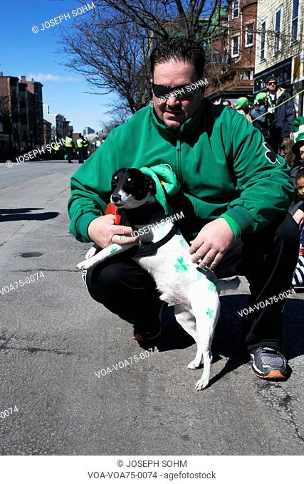 Dog dressed in green, St. Patrick's Day Parade, 2014, South Boston, Massachusetts, USA