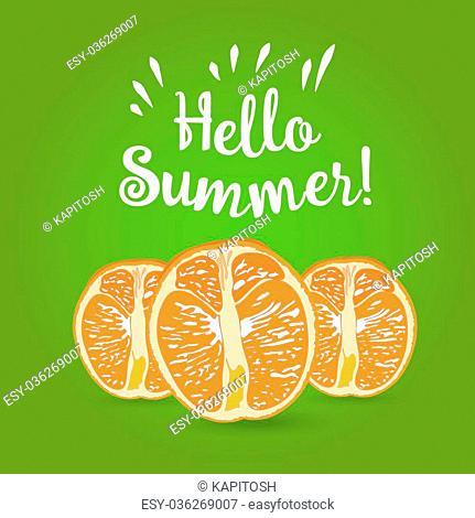 Hello Summer Inscription over orange. Vector orange isolated on white background