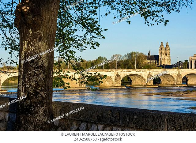 Cathedral of Saint Gatien and Wilson Bridge over Loire River. Tours, Indre et Loire, Loire Valley, France, Europe