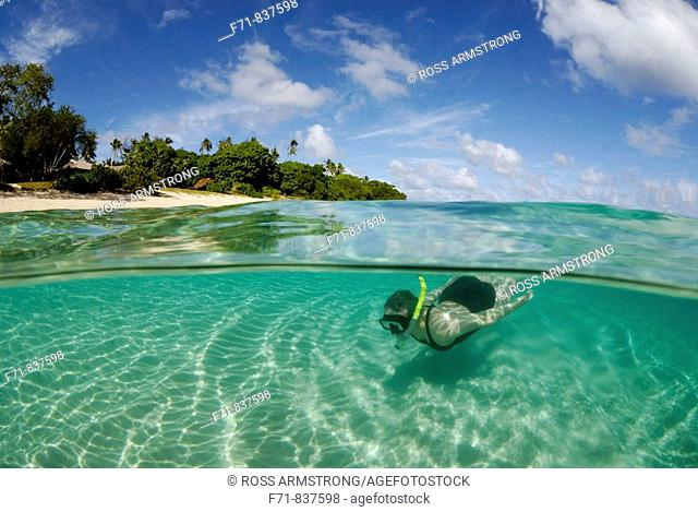 Middle aged women in one piece swim suit snorkelling over sandy on tropical beach. Ha`apai Group, Tonga. South Pacific Ocean