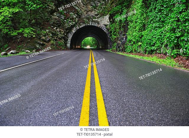 A scenic and empty road with tunnel