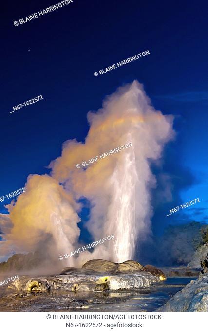 The 30 meter high Pohutu Geyser erupting, Te Puia New Zealand Maori Arts & Crafts Institute, Whakarewarewa Thermal Valley, Rotorua, North Island, New Zealand