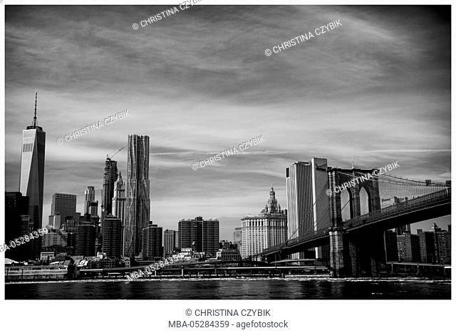 View on the Skyline of Manhattan from Brooklyn Bridge Park, New York