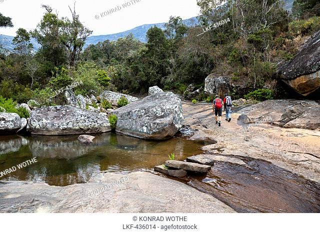 Hikers in Andringitra Mountain Range, Andringitra National Park, South Madagascar, Africa
