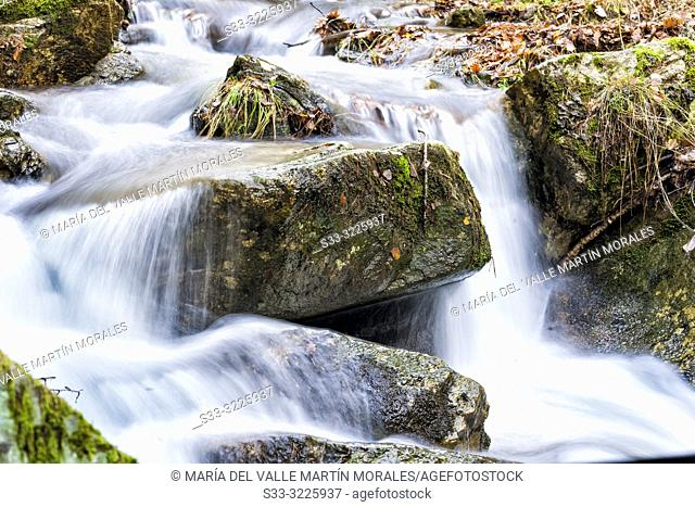 Rocks with moss and leaves at Sestil stream on an autumn day. Canencia. Madrid. Spain. Europe