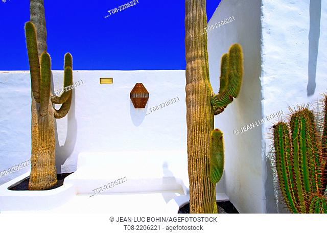 spain,canary islands,lanzarote : fundacion cesar manrique