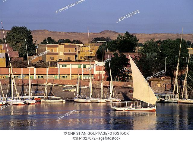 Elephantine island, Aswan, Egypt, Africa