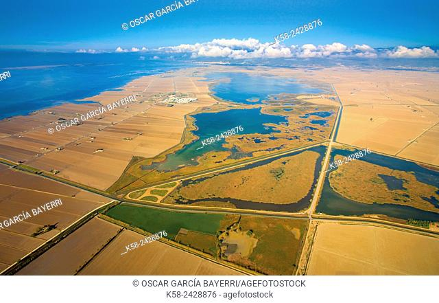 Aerial view of the Llacuna de l'Encanyissada in the Ebro Delta. Catalonia, Spain
