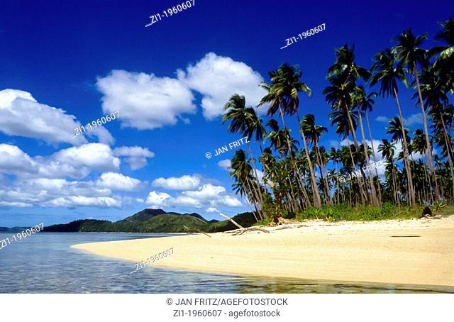 tropical beach with palmtrees at Busuanga island, Philipines