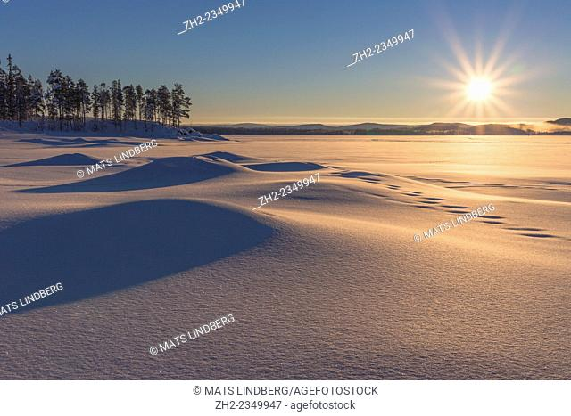 Winterlandscape with plenty of snow and snow on the trees and the sun shining into camera, Gällivare sweden