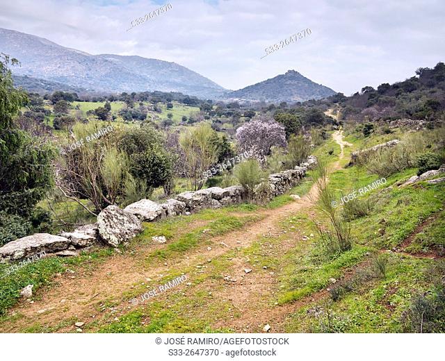 Sierra de San Vicente from Castillo de Bayuela hill. Castillo de Bayuela. Toledo. Castilla la Mancha. Spain. Europe