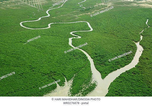 Aerial view of river in grassland , Andhra Pradesh , India