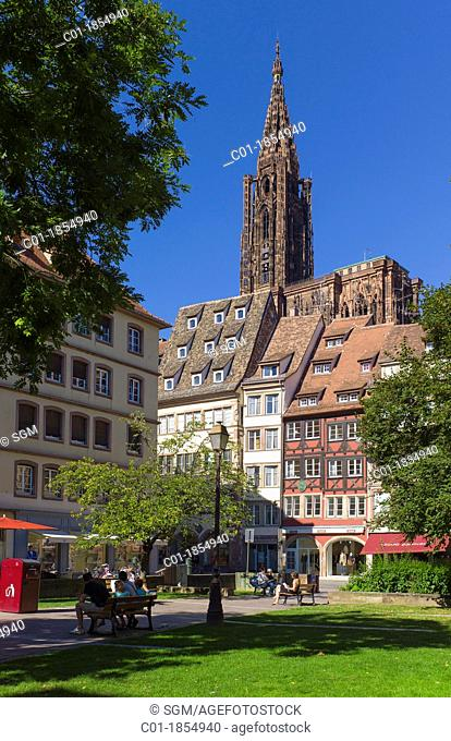 'Place des tripiers' square houses and 'Notre-Dame' cathedral Strasbourg Alsace France