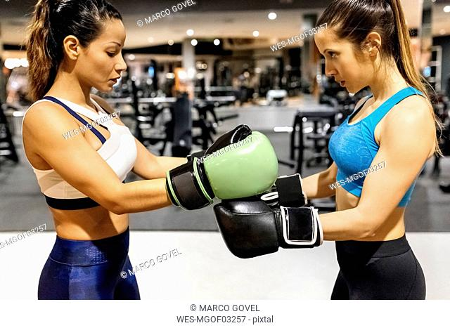 Two women preparing for a boxing match in gym