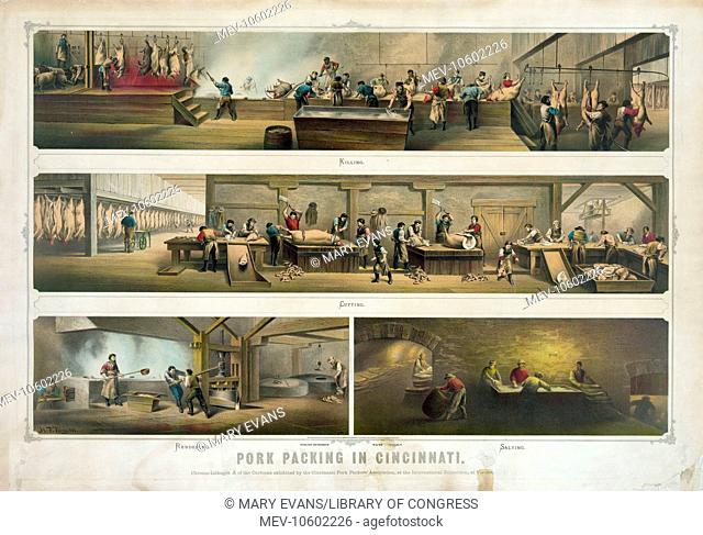 Pork packing in Cincinnati. Print showing four scenes in a packing house: Killing, Cutting, Rendering, and Salting. Date c1873