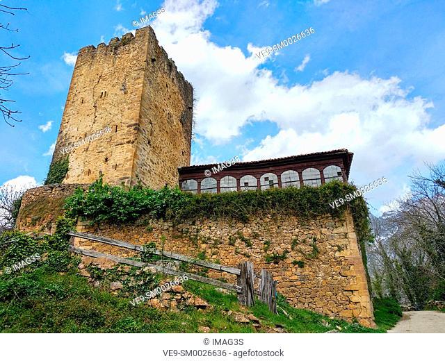 Mogrovejo tower, Liebana valley, Cantabria, Spain
