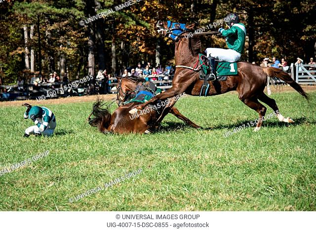 Jockey swerves to avoid fallen horse and jockey at a race at Montpelier estate, Orange, Virginia