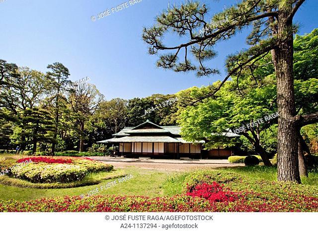 Tokyo City-The Impeial Gardens-The Tea House