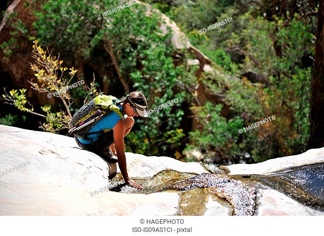 Young female rock climber crouching to touch water on rock, Mount Wilson, Nevada, USA