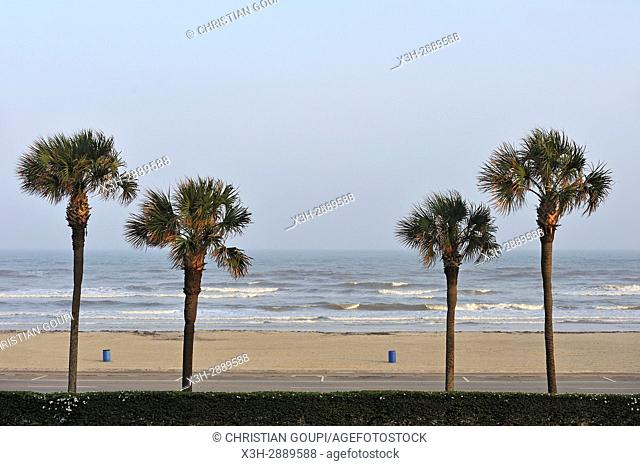 beach in front of the San Luis Resort, Seawall Blvd, Galveston island, Gulf of Mexico, Texas, United States of America, North America