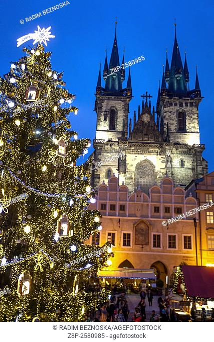 Old Town Square, Christmas market and tree, Tyn Church, Prague, Czech Republic