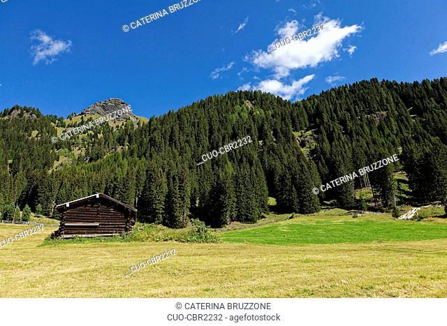 chalet wood, Valle di S.Nicolò, Val di Fassa, Dolomites, Trentino Alto Adige, Italy, Europe
