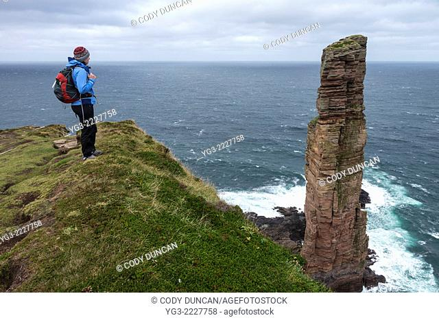 Female hiker stands near cliffs overlooking Old Man of Hoy, Hoy, Orkney, Scotland