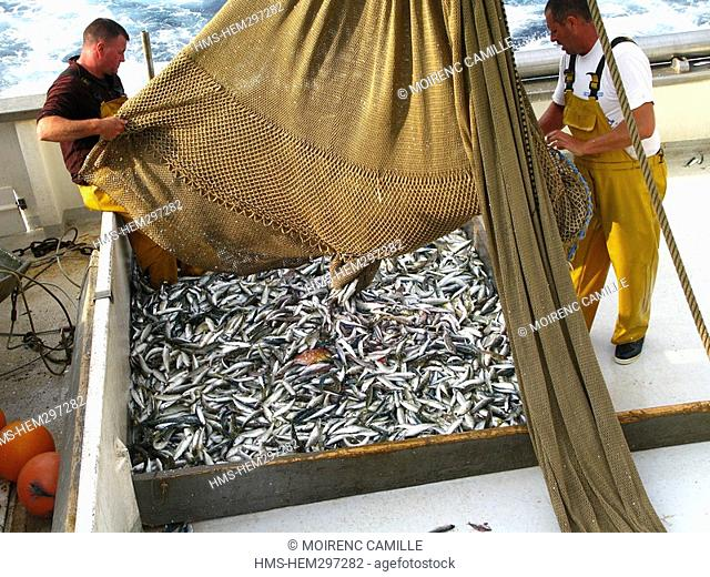 France, Pyrennees Orientales, fishing on a trawler off the coast of Port Vendres